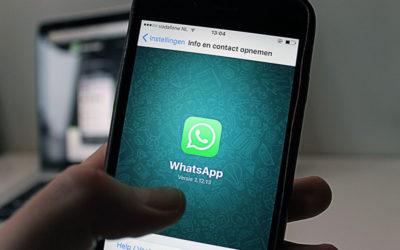 WhatsApp arriva l'applicazione New Business